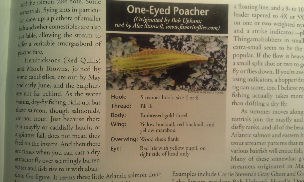 The one eyed poacher in eastern fly fishing magazine for Eastern fly fishing magazine